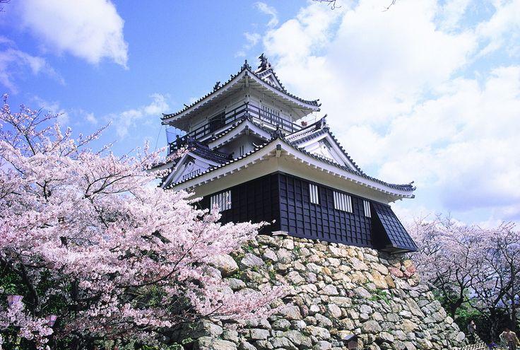 Hamamatsu | Motivist Japan