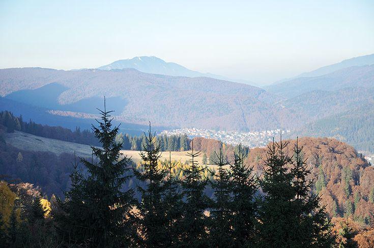 Синая – Прогулка в Карпатских горах
