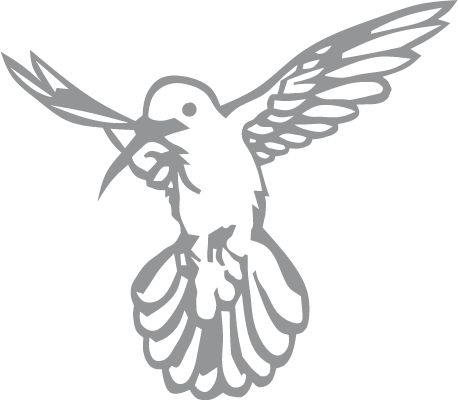 Glass etching stencil of Hovering Hummingbird. In category: Birds