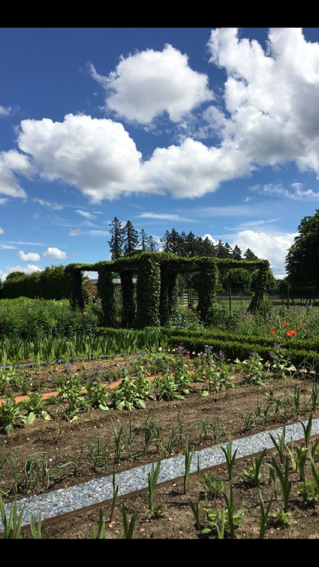 Every chateau garden need a beautiful topiary, don't ya think?