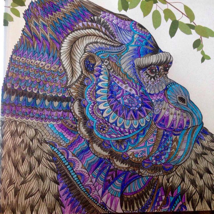 Gorilla the Menegerie animal