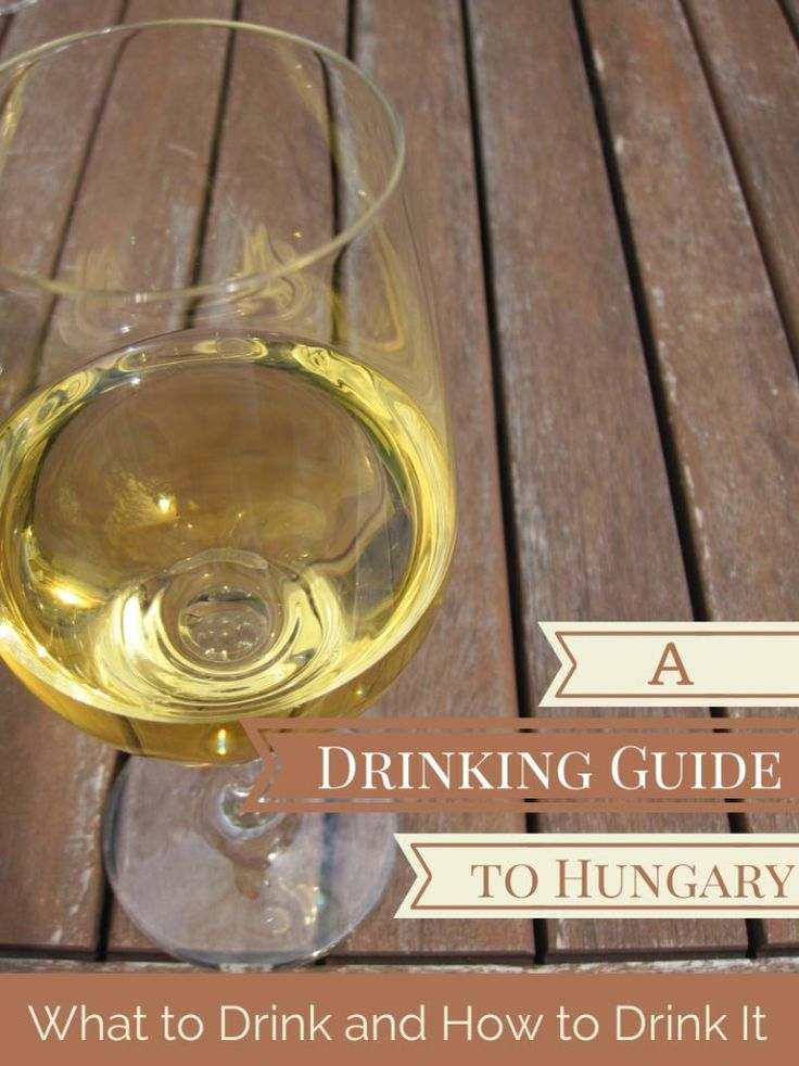 A Drinking Guide to Hungary – What to Drink and How to Drink It