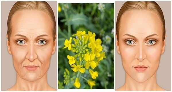 The-Famous-Russian-Elixir-You-Must-Try-Removes-10-to-20-Years-Off-Your-Face-And-The-Effects-Are-Amazing