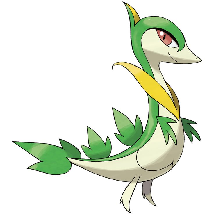 Servine - 496 - It moves along the ground as if sliding. Its swift movements befuddle its foes, and it then attacks with a vine whip. When it gets dirty, its leaves can't be used in photosynthesis, so it always keeps itself clean.