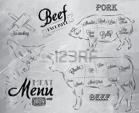 Hand Drawing Cow And Cut Of Beef Or Beef Chart Stock Photo ...