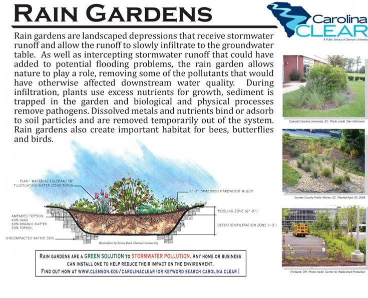Google Rain Garden Pinterest Gardens Rain and Rain