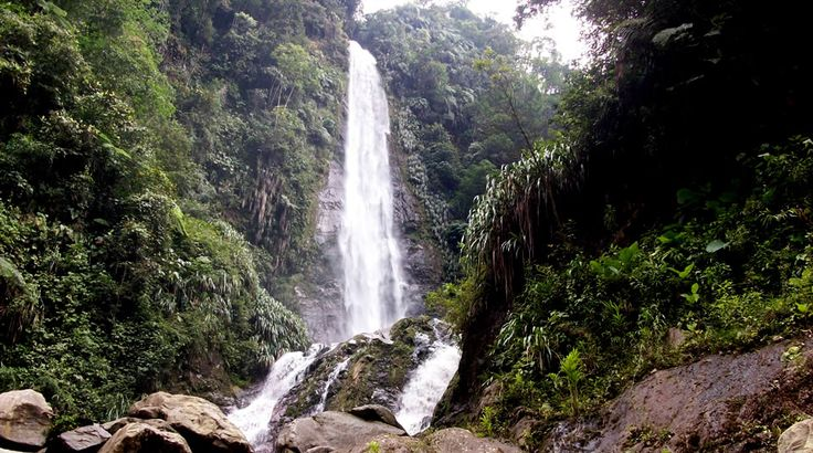 Parque Nacional Natural Serranía de Los Yariguíes | Parques Nacionales Naturales   de Colombia  Foto J.Zarate