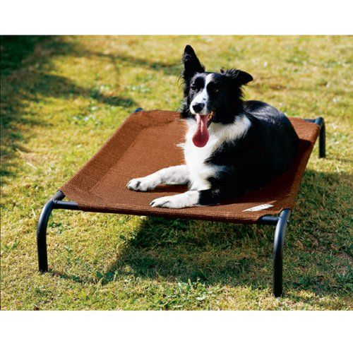 New Coolaroo Elevated Pet Bed  Concept