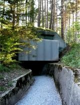 Waldbau Seilbahnstation Fläsch / atelier-f architekten