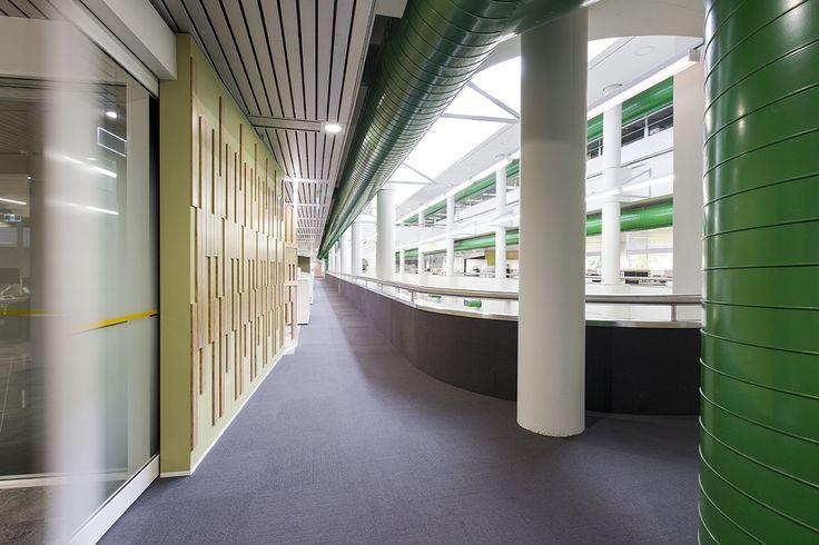 MKDC Workspace Design   Department of Education   Corridor