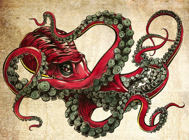 Scarlet | Visuality | Octopus tattoos, Octopus art, Octopus drawing