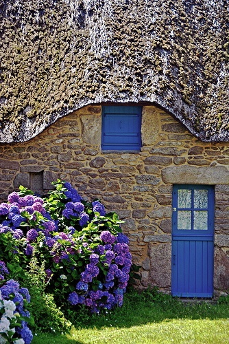320 best houses to dream about images on pinterest case for Planimetrie di piccoli cottage