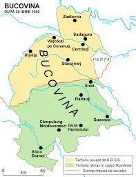 BUCOVINA, Romania - Google Search***Ukraine is yellow and Romania is green***