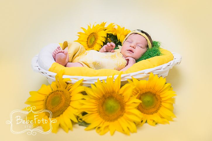 Sedință foto nou-născut |de studio