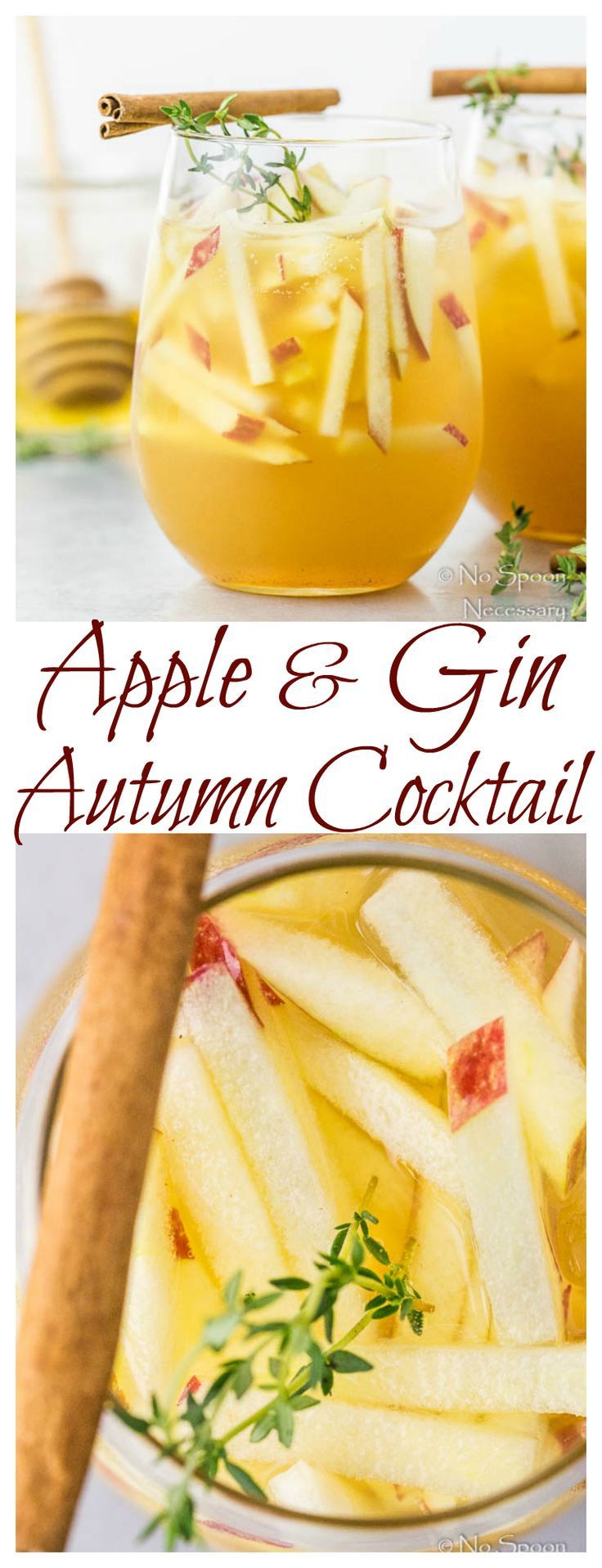 Apple & Gin Autumn Cocktail - Perfect for #Thanksgiving!