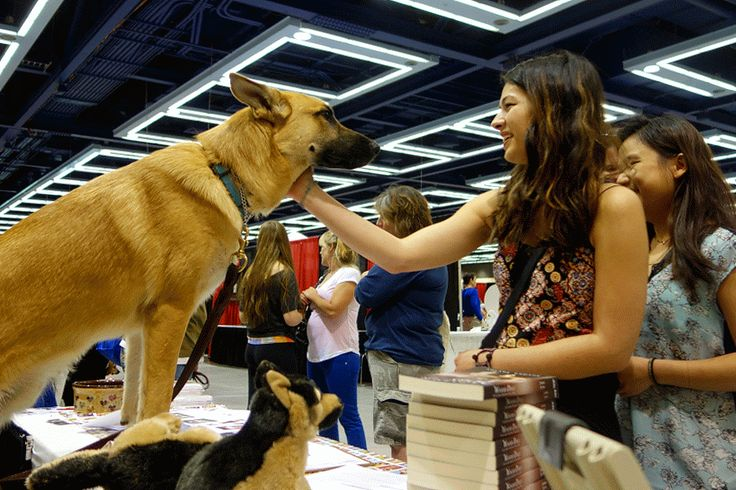 We hope you were able to make it to the Seattle Pet Expo