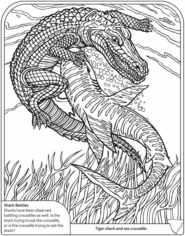 Older Kids Coloring Pages