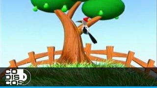 Canticuentos - El Pájaro Carpintero | Canciones Infantiles - YouTube