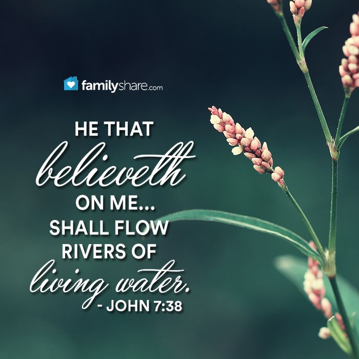 John 7: 38 - He that believeth on me, as the scripture hath said, out of his belly shall flow rivers of living water.