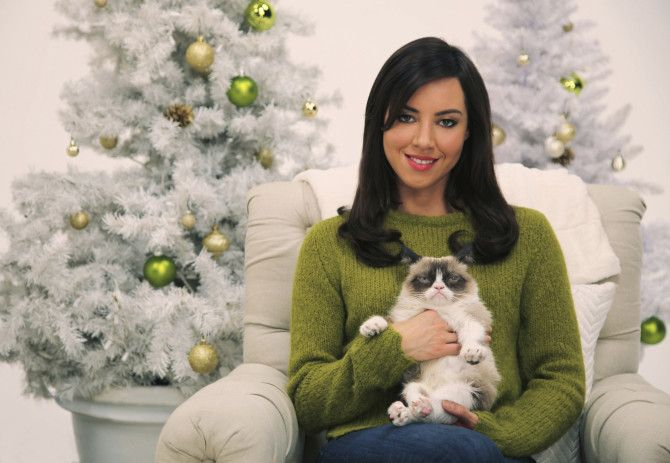 52 Funny Zoom Backgrounds To Try Rn Because We All Need A Laugh In 2020 Grumpy Cat Grumpy Cat Christmas Aubrey Plaza