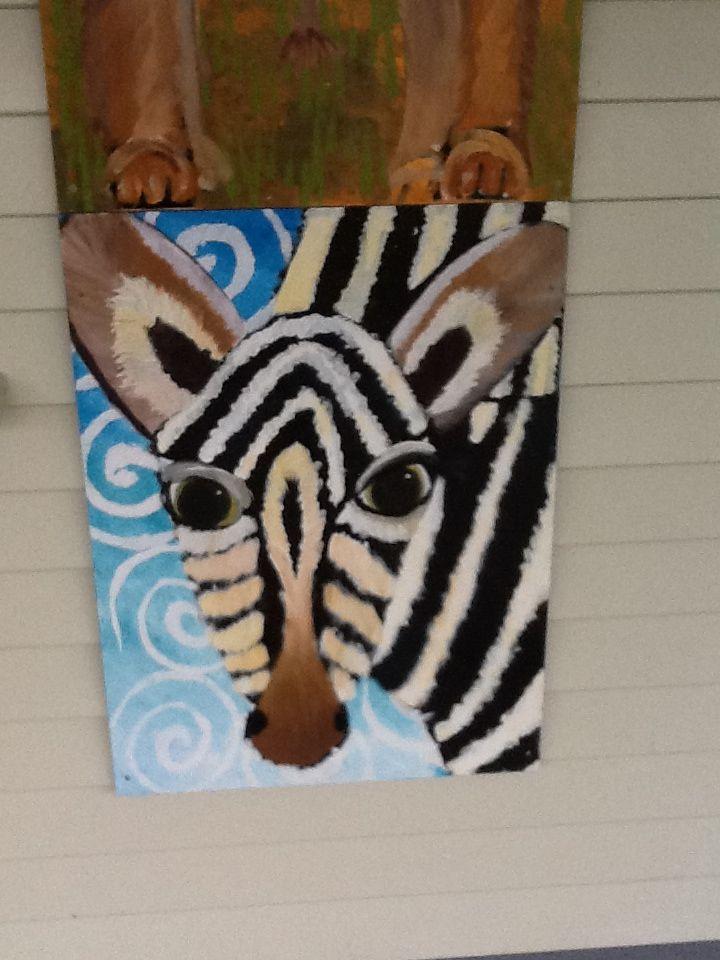 Cville zebra