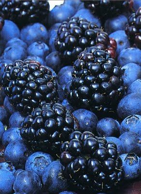 blackberries & blueberries  Nog heel even wachten en dan weer plukken in Belgie!