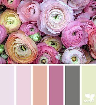 creature color | design seeds | Bloglovin'