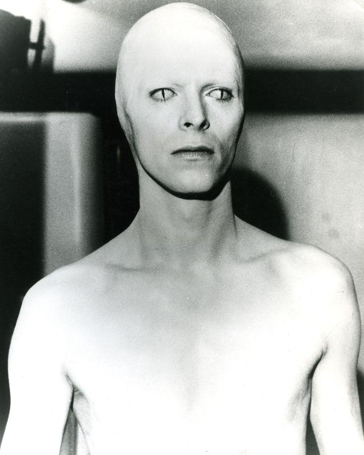 Rakbruword: David Bowie