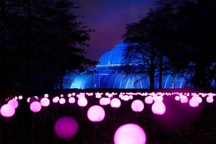 Королевские ботанические сады Кью в Лондоне « FotoRelax
