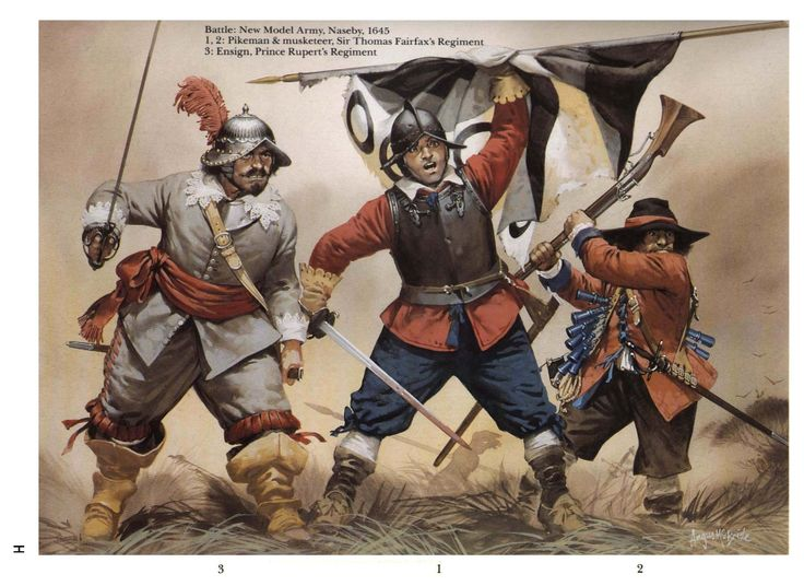 The New Model Army the battle of Naseby 1645