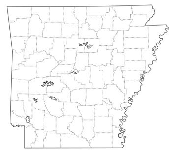 Arkansas Online Historical Newspapers Summary