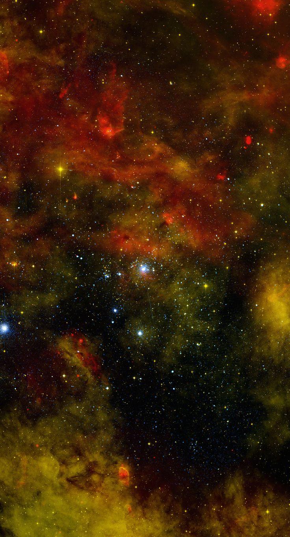 Cygnus OB2 Credit: NASA/Chandra