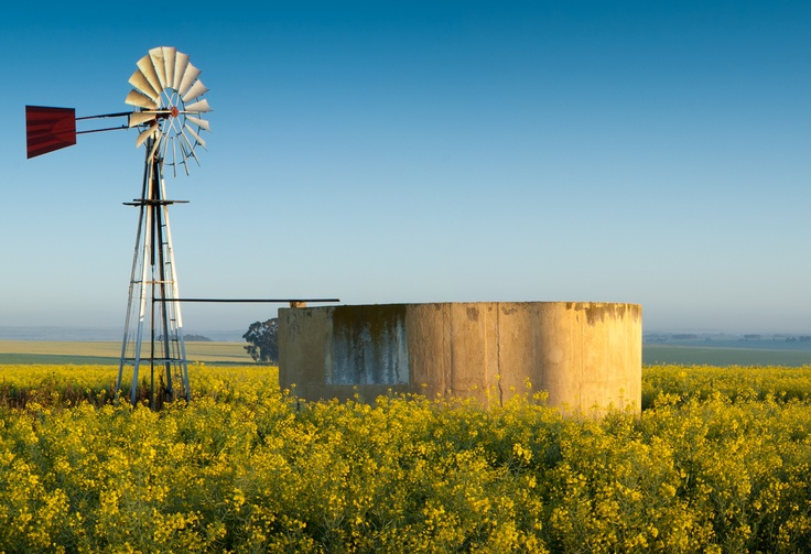 Bartholomeus Klip in Riebeeck Kasteel http://www.perfecthideaways.co.za/ #farms #capetown #accommodation