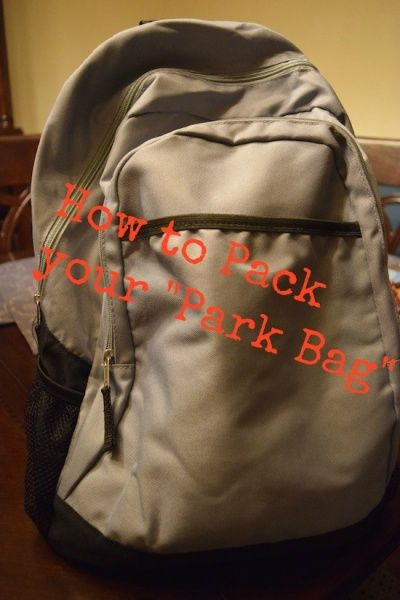 "Suggestions for packing a ""park bag"" for trips to Walt Disney World."