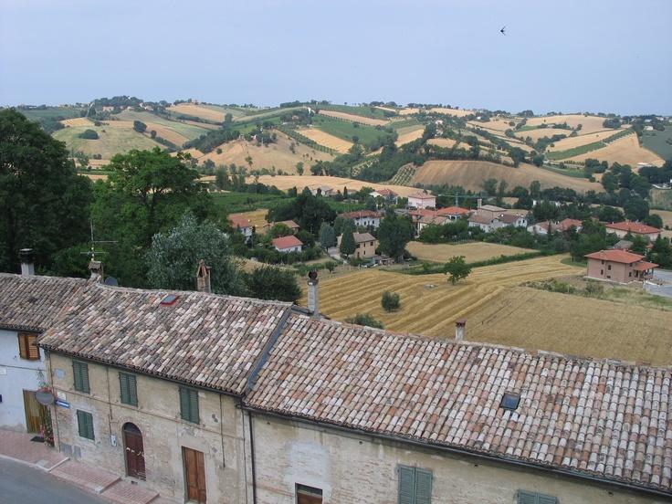 Corinaldo. Gentle hills of Marche