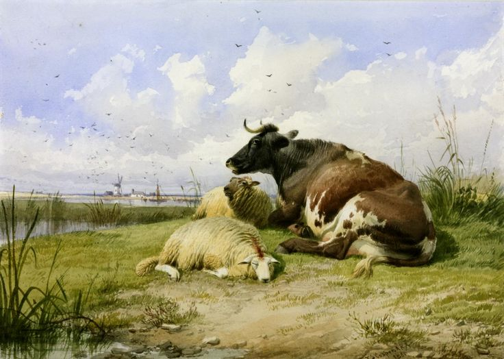'A Cow and Two Sheep', Thomas Sidney Cooper   Tate