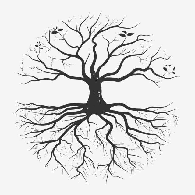 Dessin A La Main De Racine D Arbre Contexte Noir Branche Png Et Vecteur Pour Telechargement Gratuit In 2021 How To Draw Hands Tree Drawing Drawings