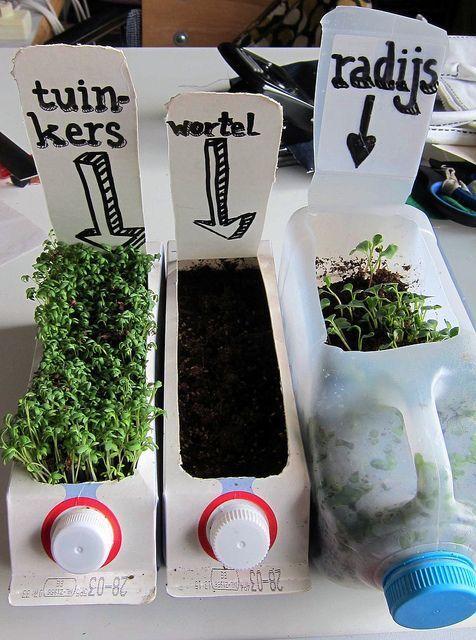 Onderwijs en zo voort ........: 2129. Moestuintjes : Oplossing voor grotere potten...