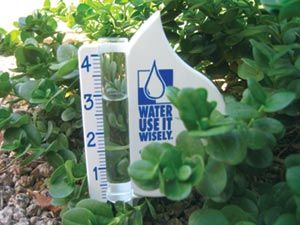 Just by following a few simple guidelines to efficient irrigation, gardeners can create hearty landscapes that can withstand hot, dry conditions. Learn the pros and cons of different irrigation systems, which includes sprinkler systems, drip irrigation and hand watering – Water Use It Wisely
