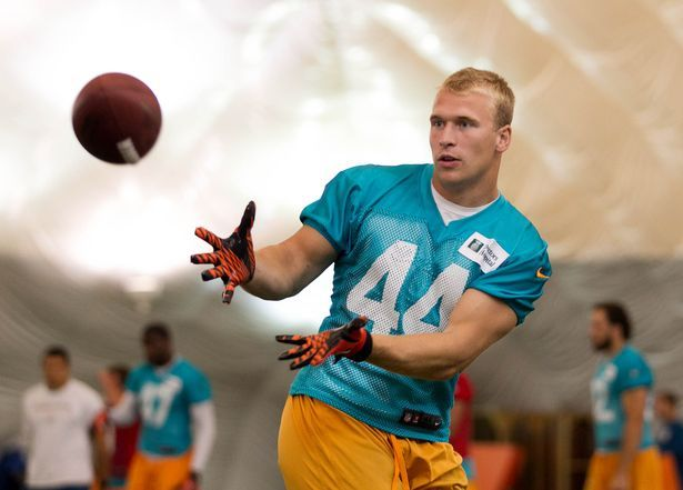 109 Best Miami Dolphins Images On Pinterest