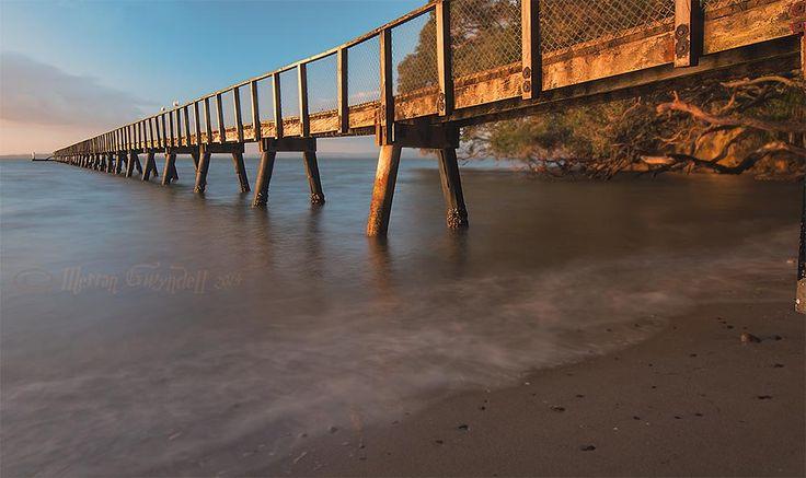 Kauri Point jetty at dawn