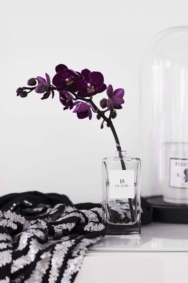 Orchid - such a pretty color
