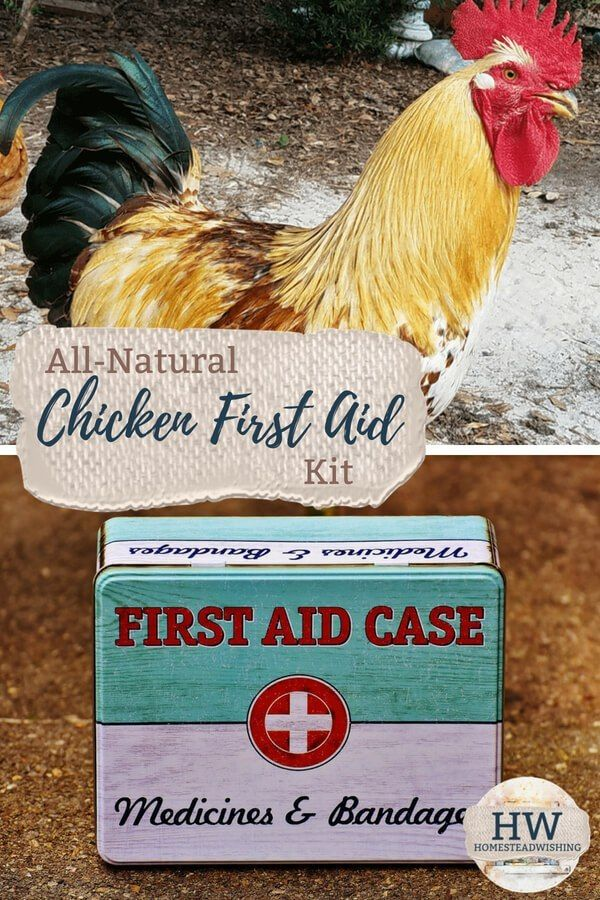 All Natural Chicken First Aid Kit Chicken Emergency Kit