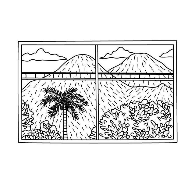 WINDOW  #proyecto89 #illustration #digitalillustration #digitalart #draw…