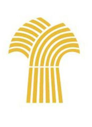 "We like the color used in this logo and the ""shock"" of wheat. A shock of wheat could also be used for the logo instead of a wheat kernel."