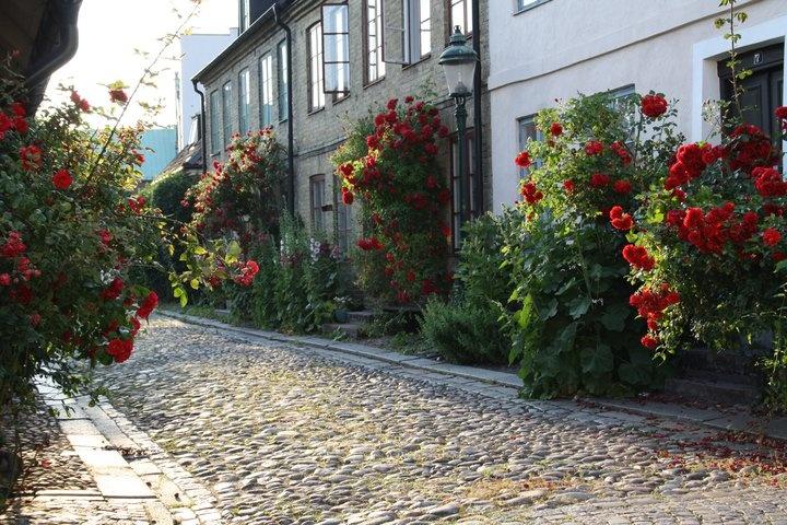 Summer in Lund