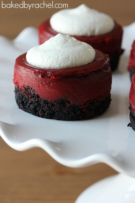 Mini Red Velvet Cheesecakes Recipe ~ Bite sized creamy red velvet cheesecakes with chocolate crust and fresh sweetened whipped cream