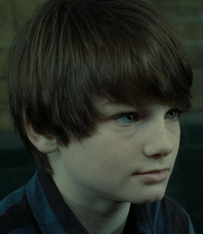 "Albus Severus ""Al"" Potter (b. between 1 September, 2005 and 31 August, 2006) was a half-blood wizard and the second son of Harry and Ginny Potter . Albus was the middle of three children, born at least a year after his older brother James Sirius, and two years before his younger sister Lily Luna. He was named in memory of Albus Dumbledore and Severus Snape. Born in around 2006, Albus became Neville Longbottom's godson."