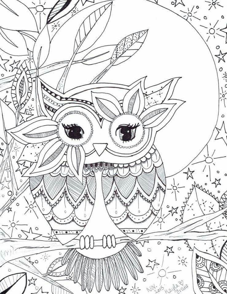 Best 25 Owl Coloring Pages Ideas Only On Pinterest