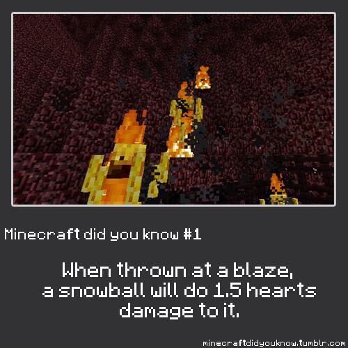 Minecraft did you know #1